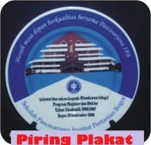 397179_piringplakatipb